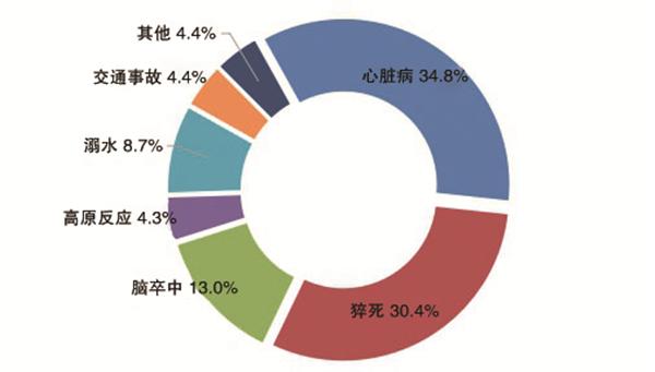图9 死亡风险事件风险因素分布.jpg