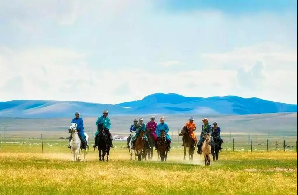 首页 壮美内蒙古 旅游风景线  在草原最快乐的事,莫过于寻找到韵味
