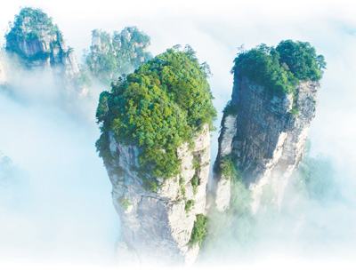 张家界:从种山林到种风景